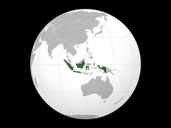 takoyaki digemari oleh orang indonesia